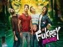 Fukrey Returns Crosses 75 Crores in Domestic Market