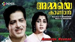 Malayalam full movie | Ammaye kanan | Classic | ft Sathyan | Madhu | Ambika others