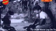 Odayil Ninnu - 1965 Full Malayalam Movie | Sathyan | K R Vijaya | Latest Online Movie