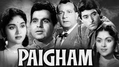 Paigham Full Movie HD | Dilip Kumar Old Movie | Vyjayanthimala | Raaj Kumar |Old Classic Hindi Movie