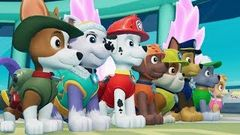 PAW Patrol Movie Cartoons Full Episodes English - Movie Game for Kids