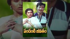 Pandanti Jeevitham Telugu Full Movie