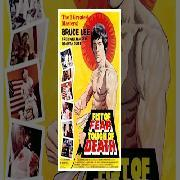 Fist Of Fear Touch Of Death - Super Hit Action Hindi Dubbed Hollywood Full Movie