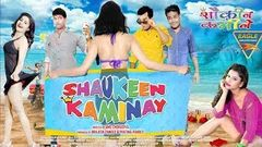 Shaukeen Kaminay Latest Hindi Full Movie | Kartik Gaur,  Sahil Garg, Seema | Hindi Full Movies