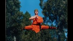 The Shaolin Temple | Hollywood Movie | Classic Hits