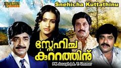 Snehicha Kuttathinu (1985) Malayalam Full Movie | Prem Nazir | Seema