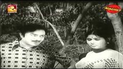 Chirikudukka Full Malayalam Movie 1976 | Old Malayalam Hits
