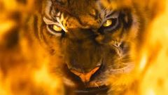 Burning Bright (Tiger) 2016 - Latest Hollywood Movie in Hindi Dubbed | Full Action Movie 2016 [HD]
