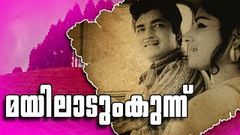Malayalam Full Movie Sujatha |Premnaseer |Jayabharathi |