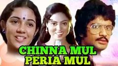 Chinna Mul Peria Mul | Shanthi Krishna, Raja, Sreekanth | Tamil Thriller Movie | Film Library