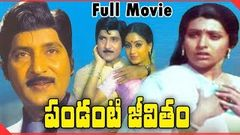 Pandanti Jeevitham 1981 Telugu Full Length Movie | Shoban Babu, Sujatha, Vijaya Santhi