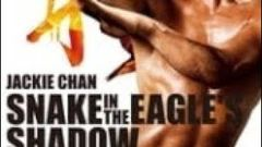 Snake in eagle shadow in hindi china film dubbed india hindi language by siam