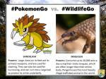 US Wildlife Service Finds Similarities Between PokemonGo Characters And Actual Wildlife