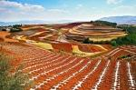 The Red Earth Terraces of Dongchuan, China