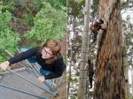 The Fire Lookout Trees of Australia