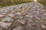 The Cobbled Hell of Troue dArenberg